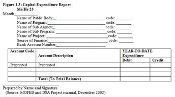 capital expenditure report